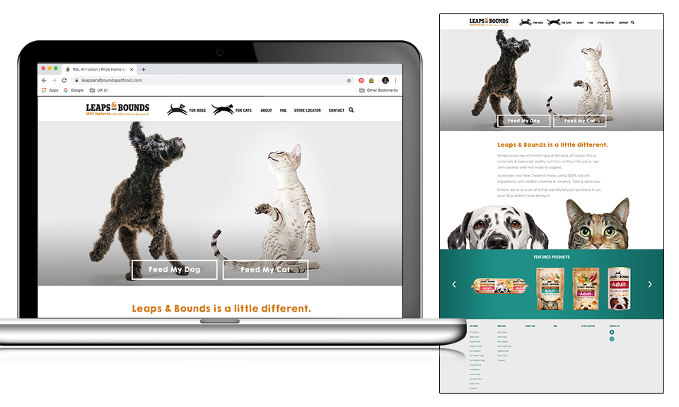 Leaps & Bounds homepage